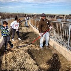 Volunteering at Floodwall