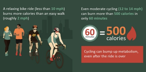 How many calories are burned while biking?